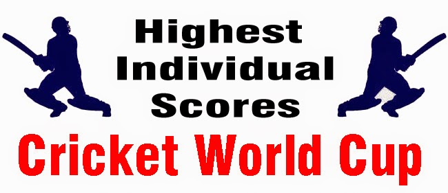 highest individual score in cricket world cup history